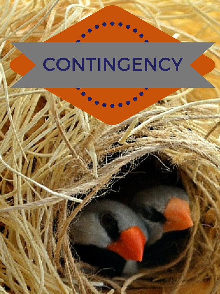 SHOULD YOU ACCEPT A CONTINGENCY OFFER