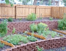 Edible landscape includes currant, gooseberry, raspberries, dwarf apple, peach and more