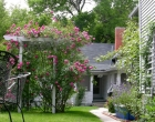 Rose garden with arbor