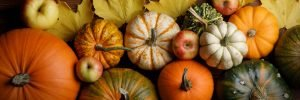fall colors and pumpkins