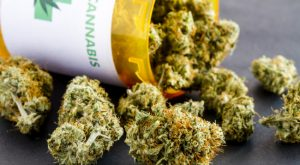 Close up of medical marijuana buds spilling out of prescription bottle