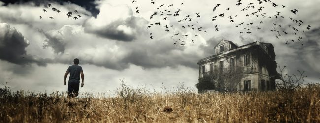 Dilapidated old house in field with man and birds