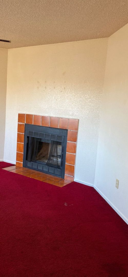 wood burning fireplace in fourplex for sale colorado springs